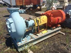 S/Steel Pumps - picture0' - Click to enlarge