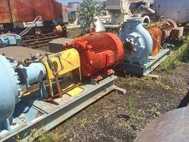 S/Steel Pumps - picture1' - Click to enlarge