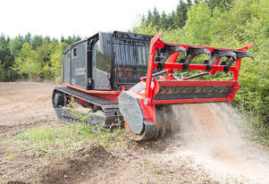 Raptor 300 Forestry Mulcher