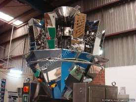 20 Head Multihead Weigher (Dimple Plate) - picture1' - Click to enlarge