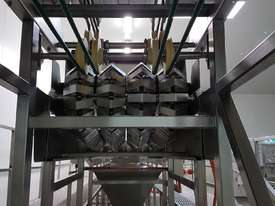 Avocado Processing line - picture0' - Click to enlarge