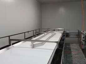 Avocado Processing line - picture3' - Click to enlarge