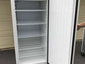 Commercial Polar Fridge 600L single door - picture0' - Click to enlarge
