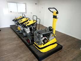 Wacker Neuson  Vibrating Plate Roller/Compacting - picture0' - Click to enlarge