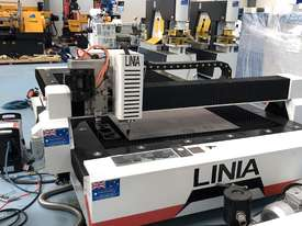 LINIA CNC PLASMA W/DRILL HEAD  - picture2' - Click to enlarge