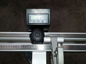 NANXING Auto Fence 3.8m precision Panel saw MJK1138F1 - picture2' - Click to enlarge