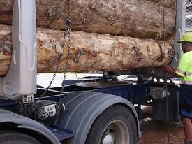 ExTe air operated load restraint - picture14' - Click to enlarge