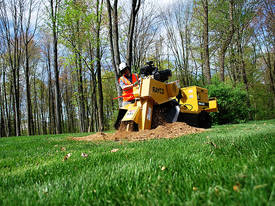 2019 Rayco RG27 Petrol Stump Grinder - picture2' - Click to enlarge