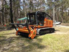 FAE Prime Tech PT 300 Forest Mover, Mulcher - picture4' - Click to enlarge
