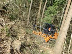 FAE Prime Tech PT 300 Forest Mover, Mulcher - picture5' - Click to enlarge