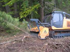 FAE Prime Tech PT 300 Forest Mover, Mulcher - picture10' - Click to enlarge