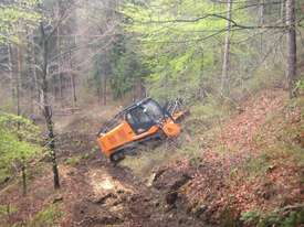 FAE Prime Tech PT 300 Forest Mover, Mulcher - picture12' - Click to enlarge
