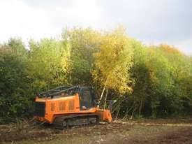 FAE Prime Tech PT 300 Forest Mover, Mulcher - picture17' - Click to enlarge