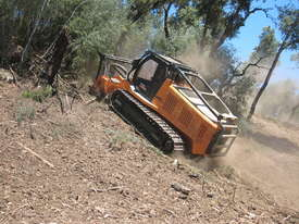 FAE Prime Tech PT 300 Forest Mover, Mulcher - picture19' - Click to enlarge