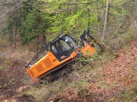 FAE Prime Tech PT 300 Forest Mover, Mulcher - picture20' - Click to enlarge